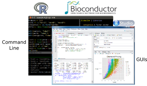 R & Bioconductor - Manuals